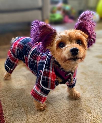 macy jane in pajamas