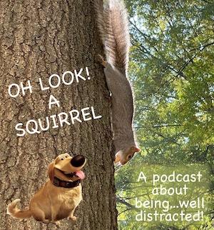 look! a squirrel