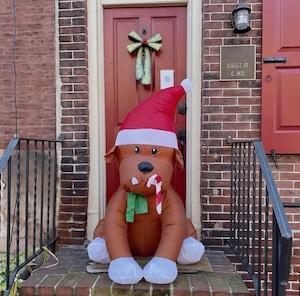 Blow up Christmas Dog