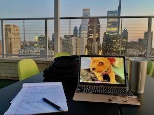 laptop outdoors