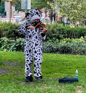 a person in a cow costume playing a violin in a park