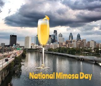 mimosa over the Philadelphia skyline