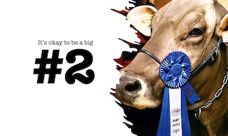 Prize winning cow empress
