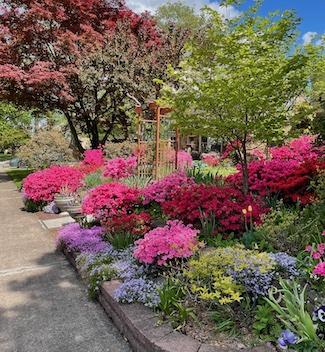 Flower garden in front yard