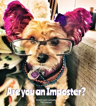 photo of puppy wearing glasses to promote podcast about imposter syndrome